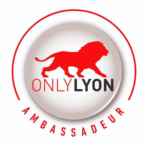 ONLY LYON Montgolfières et Cie Annonay Ardèche Montgolfière Voyage voler vol Rhône-Alpes